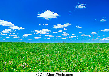 clouds and meadow - relief picturesque clouds and meadow are...