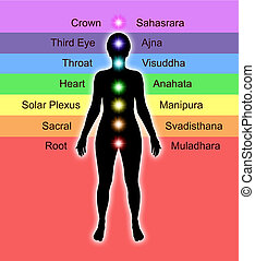 Chakra Names and Diagram - Simple diagram showing position...