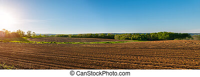 Panorama of agricultural field in springtime Annapolis...