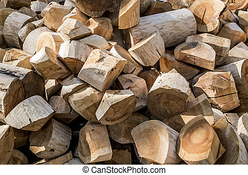 A pile of wood-hewn logs in the forest in summer day