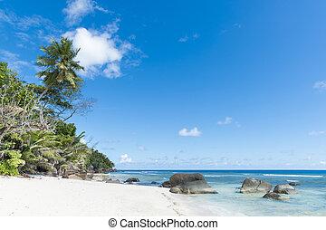 beach of tropical island - white sand beach under blue...