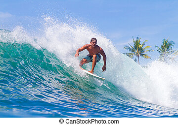 Surfing a Wave Bali Island Indonesia - Picture of Surfing a...