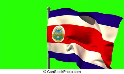 Costa rica national flag waving on flagpole on green screen...