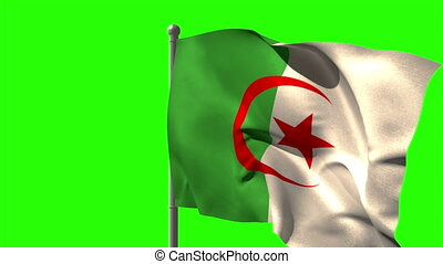 Algeria national flag waving on flagpole on green screen...