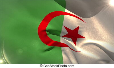 Large algeria national flag waving with lens flare