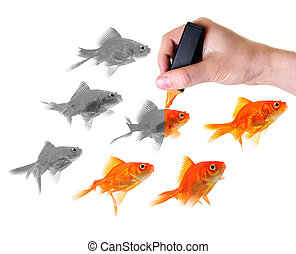 giving life to a group of goldfish - hand holding marker...