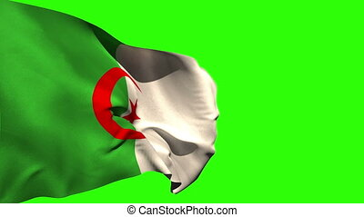 Large algeria national flag blowing on green screen...