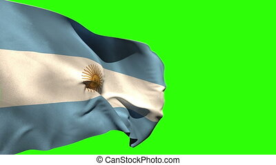 Large argentina national flag blowing on green screen...