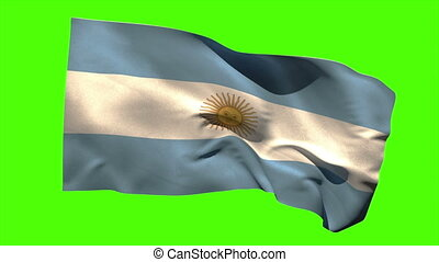 Argentina national flag blowing in the breeze on green...