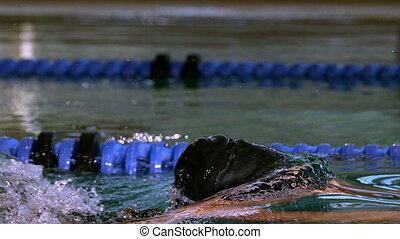 Fit swimmer doing the butterfly stroke in swimming pool in...