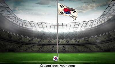 Korea Republic national flag waving on flagpole in football...