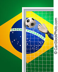 soccer in brazil - goalkeeper in action in brazil trying to...