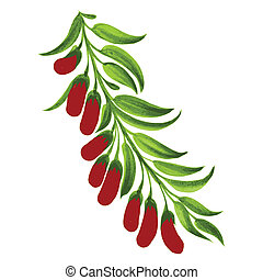decorative ornament branch with red berries - hand drawn...
