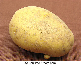 Singel unpeeled potato on a brown background