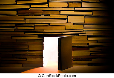 Wall of books with open door