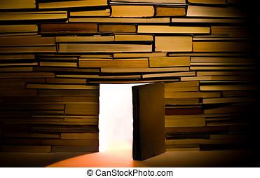 Wall of books with open door