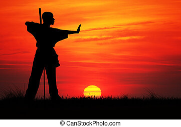 Kung fu silhouette at sunset