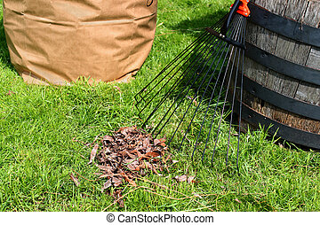 Yard maintenance - Freshly raked backyard, with rake, leaves...