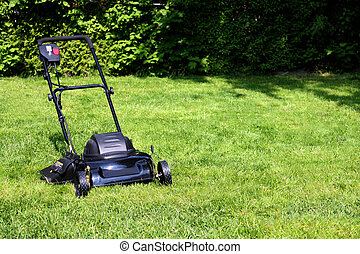 lawnmower - Black lawnmower on freshly cut backyard grass