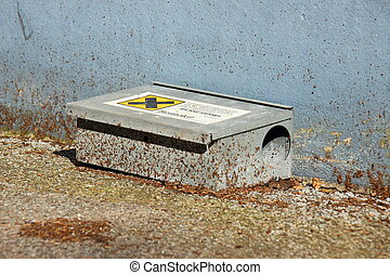 Rat poison box trap at wall with dirt