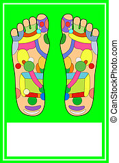 Acupuncture - Foot Scheme - Traditional alternative heal,...