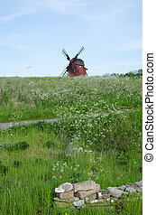 Landscape with cow parsley and an old wooden windmill at the...