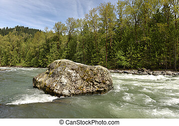 Chilliwack River in forest with large boulders and stones