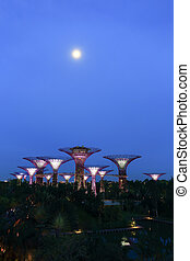Night view of Supertree Grove at Gardens by the Bay -...