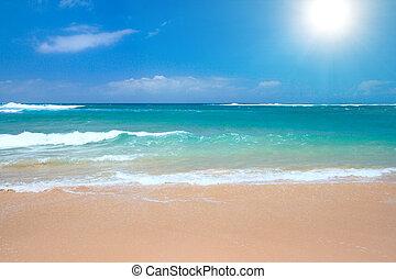 Peaceful beach scene with ocean and blue sky