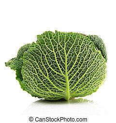 savoy cabbage - fresh savoy cabbage in white background