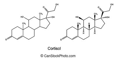 Cortisol - Structural chemical formulas of cortisol, 2D...