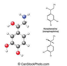 Noradrenaline - Structural chemical formulas and model of...