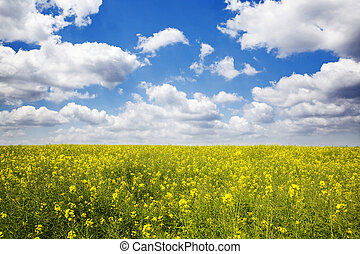 Spring nature. Simple beautiful nature background with green...
