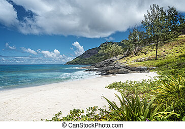 Tiny white-sand beach in Seychelles - Anse Cimitiere beach...
