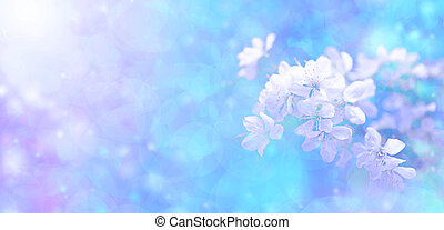 Sunshine bokeh blossom banner - A creative blue banner with...