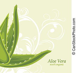 Background with aloe vera - Decorative background with aloe...