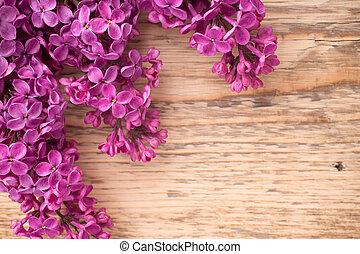 Lilac. - Purple lilac on a wooden background. Studio...