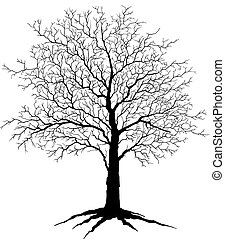 Tree Silhouette - Illustration of a tree in winter with no...