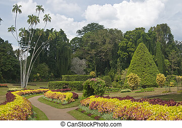Botanic Gardens - Colorful display of Coleus in a curved...