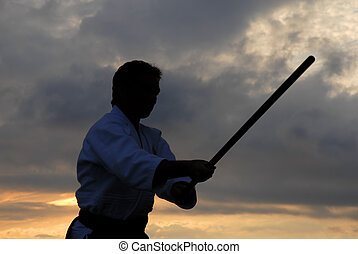 aikido master silhouette with stick at sunset