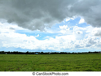 black and clound sky - white, spring, pasture, blue,...