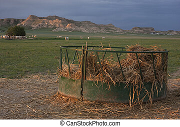 cattle feeder with corn straw in pasture - round metal...