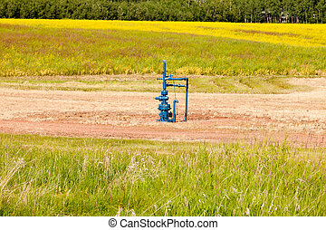 Natural gas wellhead Alberta Canada grassland - Natural gas...