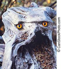 Angry looking troll rotting wood fairy being - Funny forest...
