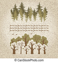 Ilustración, verde, conífero, caduco, fores