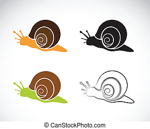 Vector image of an snail on white background