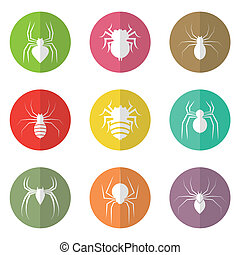 Vector group of spider in the circle
