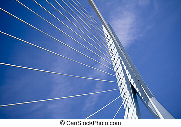Erasmus Bridge Details - details of the Erasmus Bridge - the...