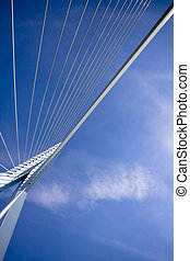 Erasmus Bridge. Details - details of the Erasmus Bridge -...