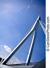 Back view of Erasmus Bridge - View on the Erasmus Bridge...